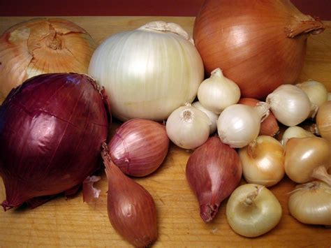 types of onions a couple in the kitchen french 7 onion soup