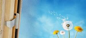 Insektenschutz Für Dachfenster : fliegengitter dachfenster insektenschutzrollo kaufen ~ Articles-book.com Haus und Dekorationen