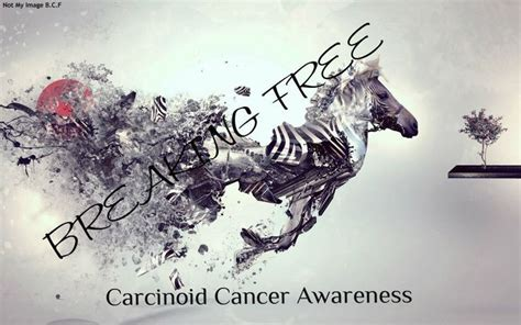 images  carcinoid cancerneuroendocrine