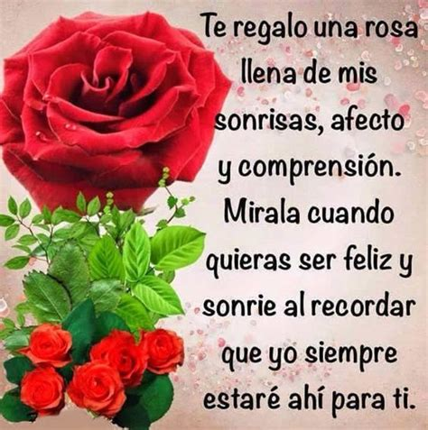 imagenes de rosas rojas  frases de amor romanticas