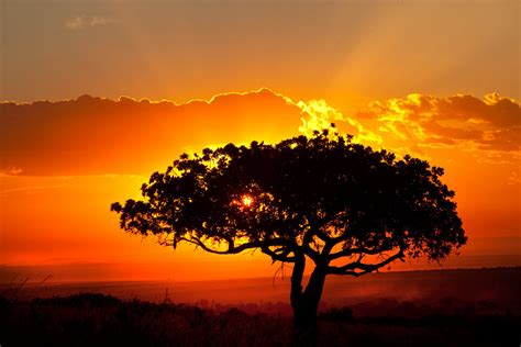 African Landscape Sunset Cool Wallpapers  I Hd Images