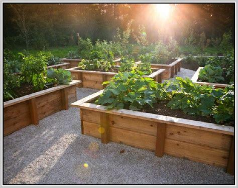 17 Best Images About Vegetable Garden Design On Pinterest