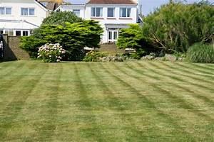 Mowed Garden Lawn Free Stock Photo