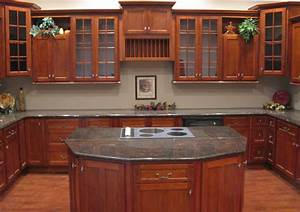 Cherry Shaker Kitchen Cabinets Home Design - Traditional