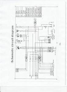 Wiring Diagram Qingqi