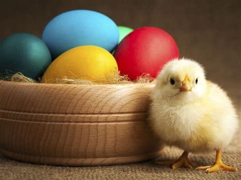 Sprüche Für Ostern  Für Sie
