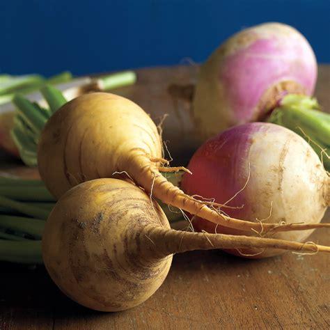 turnip  rutabaga recipes martha stewart