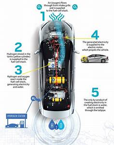 This Diagram Shows The Main Components Of The Toyota Mirai