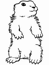 Groundhog Coloring Pages Preschool Standing Ground Printable Clipart Sheets Groundhogs Happy Activities Hog Primarygames Crafts Ebook Clip Colouring Activity Library sketch template