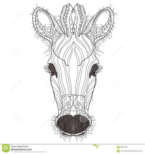 Sketch Doodle Hand Drawn Illustration Of Zebra Stock