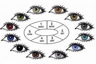 Eye Human Chart Eyes Colors Rare Shape