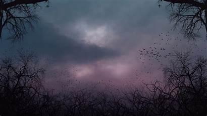Creepy Sky Scary Deviantart Revised Background Backgrounds