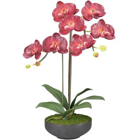 ดอกไม้แต่งบ้าน ดอกกล้วยไม้ phalaenopsis สีสวยเหมือนของจริงจัดในกระถางเซรามิค สำหรับประดับตกแต่ง ...
