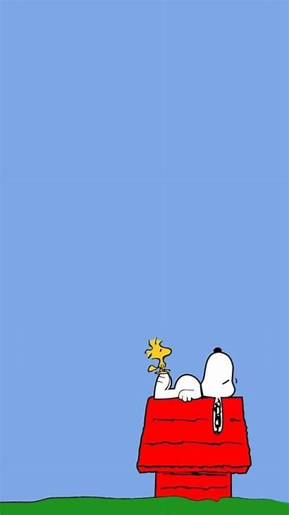 Snoopy Desktop 1080p Charlie Brown Pc 1080