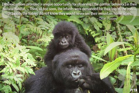 quotes   change     zoos peta