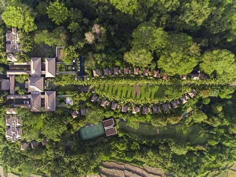 Maya Ubud Resort Bali Jungle Trekking Tour And Guide