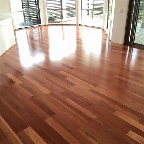 Sydney Bluegum Flooring   Lakeside Flooring Floating
