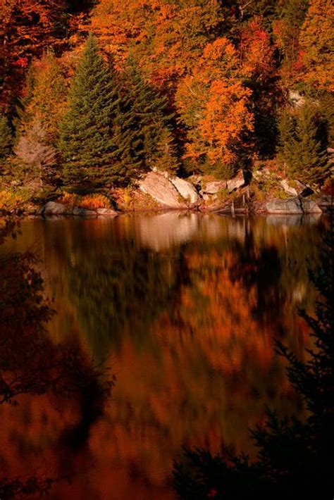 25 Beautiful Fall Pictures - Gorgeous Photos of Autumn Leaves