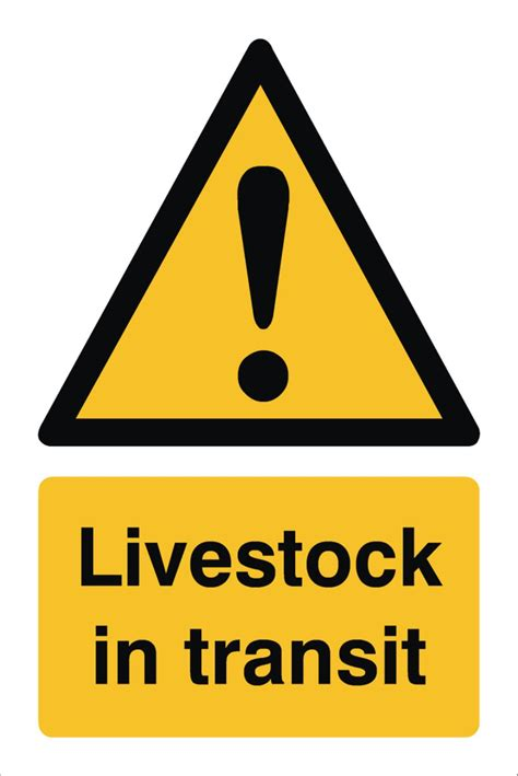 Livestock In Transit Sign  Raymac Signs. Social Security Tucson Az Movies Henderson Nc. Quick Books Customer Service Phone Number. Central Industrial Packaging. Magento Hosting Providers Alabama Health Care. Food Safety Training Dvd Running Fitness Plan. Best Master Of Finance Programs. Memory Care Assisted Living Az Car Insurance. Online Schools For Dental Assistant