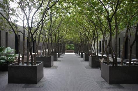 minimalist garden picture  grand hyatt hong kong hong kong tripadvisor
