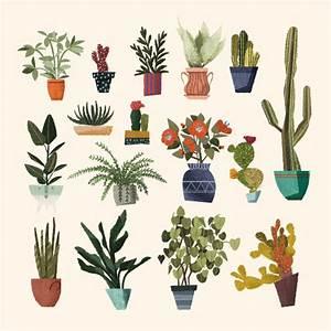 flower cactus Tumblr
