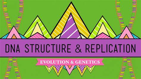 dna structure  replication crash  biology