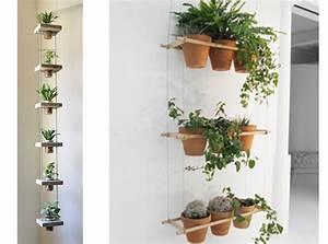 Suspension Pour Plante Interieur : plante d int rieur suspendue photos de magnolisafleur ~ Teatrodelosmanantiales.com Idées de Décoration