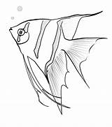 Fish Angel Coloring Angelfish Sketch Drawing Printable Fishing Chameleon Sky Getdrawings Lure Sheet Recommended sketch template
