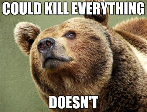 Funny Bear Meme - the end to all bear memes daily of the day