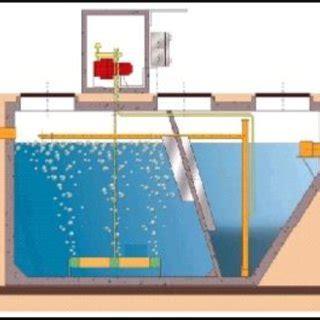 Vasca Di Ossidazione by Ecosistema Maketocare Numerosit 224 Dei Soggetti Base