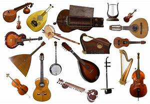 Your Symphony At The Library  Strings Instrument Family