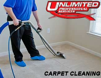 home unlimited professional services