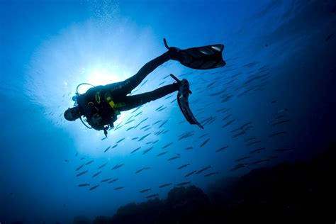 Dive Ssi - ssi open water diver coraya divers madinat marsa alam