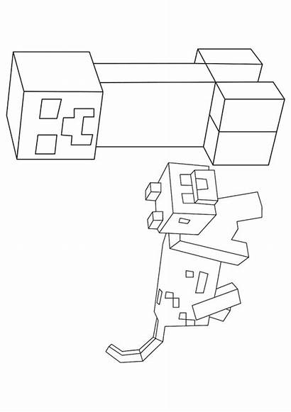 Minecraft Creeper Pages Dog Coloring Printable Colouring