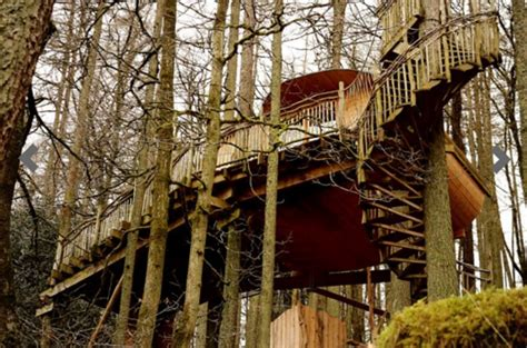 Luxury Tree House Holidays In Wales Just £ Each For