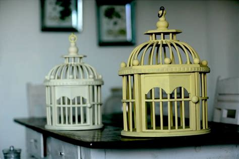 The Awesome Of Small Decorative Bird Cages Ideas