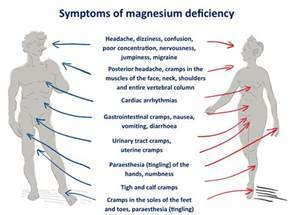 ThermoScan: The Importance of Magnesium