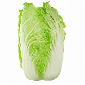Chinese Cabbage  Wombok