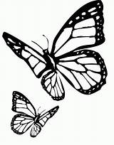 Butterfly Cartoon Coloring Drawing Clipart Dark Library Popular Clip sketch template