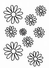Para Margaritas Pintar Dibujos Flowers Gratis Coloring Flower Colorear Flores Embroidery Euroresidentes Drawing Patterns Imagenes Designs Dibujo sketch template