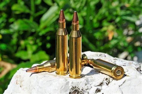 243 Winchester Caliber  Ammunition All4shooterscom