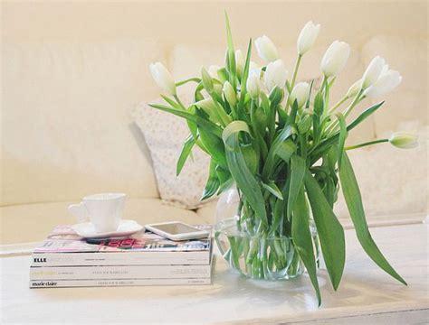 La calle sono delle bellissime piante bulbose che potete coltivare nei vostri giardini, sia in vaso che a terra. Come decorare casa con fiori freschi in vaso - Blog di moda