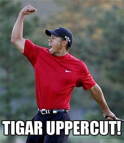 Uppercut Meme - who is the muay thai king sagat vs joe higashi shoryuken