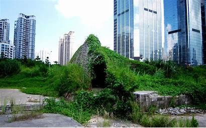 Urban Acupuncture Secret Dome Architecture Bug Shenzhen