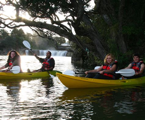 Book Now Bay Of Islands Paddle Boarding Boat Cruise