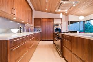 wood veneer kitchen cabinets zebra wood veneer kitchen cabinets cabinet from medium