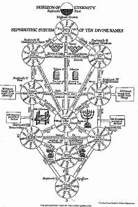Tree Of Life And The Divine Names