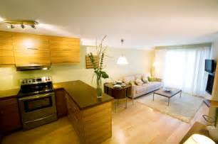 Living Room And Kitchen Ideas Living Room And Kitchen Designs Modern Living Room And Kitchen Designs Luxury Living Rooms