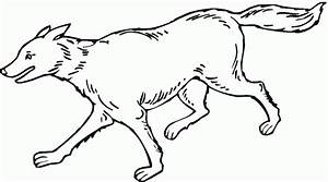 Baby Wolf Pup Coloring Pages