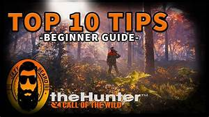 Top 10 Best Tips  U0026 Tricks For Beginners In The Hunter Call